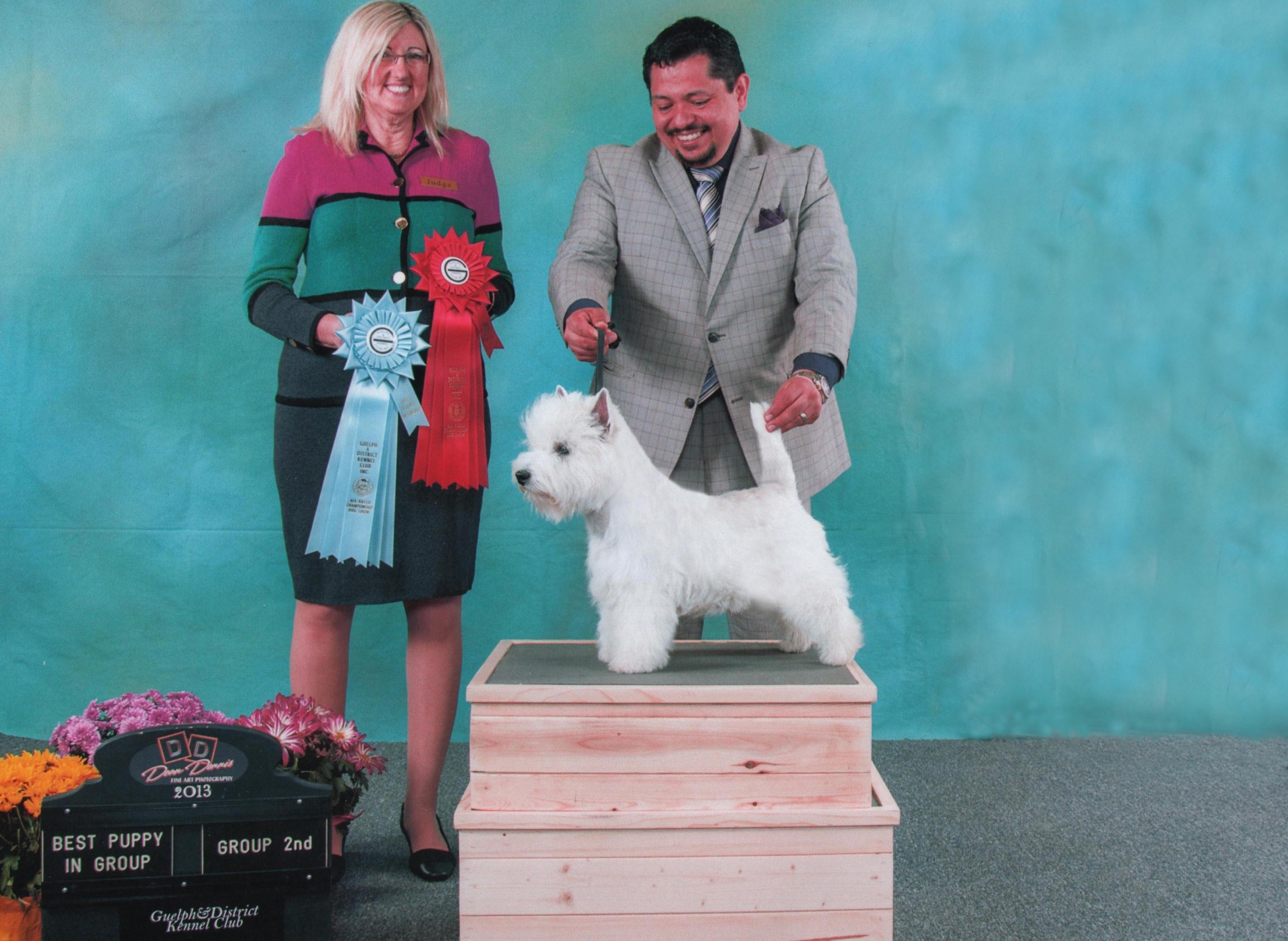 Shakespeare Westie Male Canda Ch